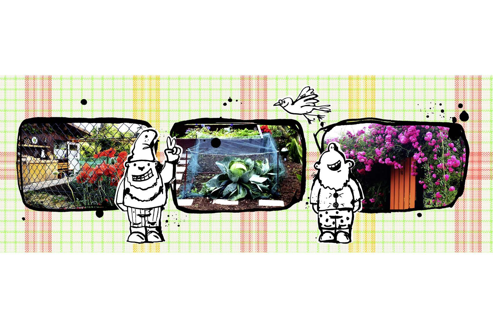 illustration-kunst-einmachglas-09.jpg